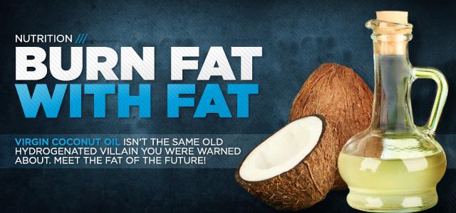 fat burn fats