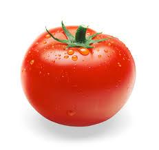 Tomato มะเขือเทศ