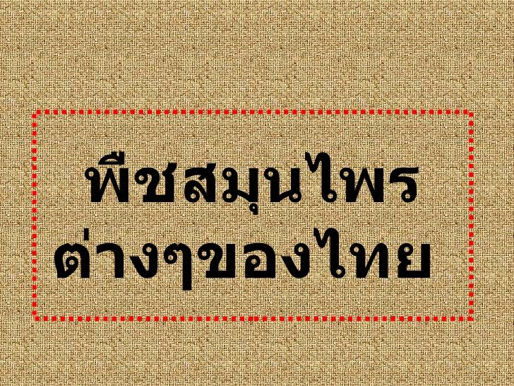 ชื่อสมุนไพรไทย0