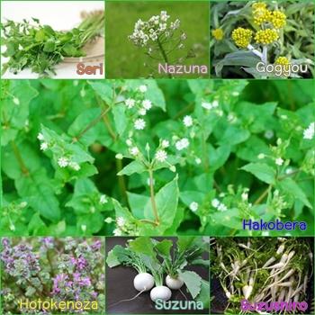 พืชสมุนไพร1