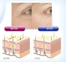 Importance of Collagen For Healthy