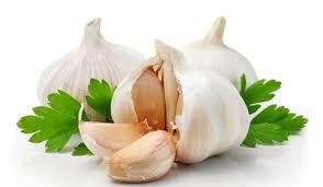 กระเทียม Garlic