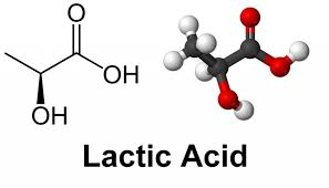 Lactic Acid (AHA)