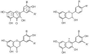 Structure Of Polyphenols or Flavonoids