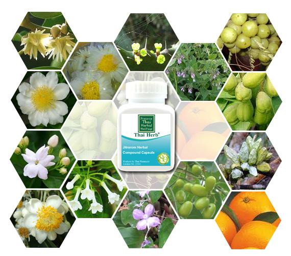 Thai Herb Web