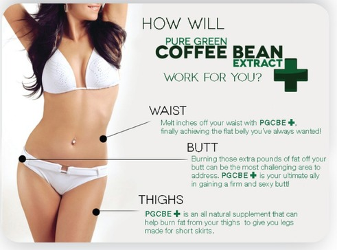 how green coffee bean work for you