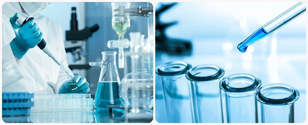 soap-and-cosmetics-development-%e0%b8%a3%e0%b8%b1%e0%b8%9a%e0%b8%9e%e0%b8%b1%e0%b8%92%e0%b8%99%e0%b8%b2%e0%b8%aa%e0%b8%b9%e0%b8%95%e0%b8%a3%e0%b8%aa%e0%b8%9a%e0%b8%b9%e0%b9%88-%e0%b8%84%e0%b8%a3