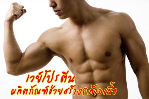 การกิน เวย์โปรตีน3