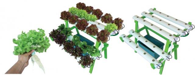 ชุดปลูกผักไฮโดรฯ1