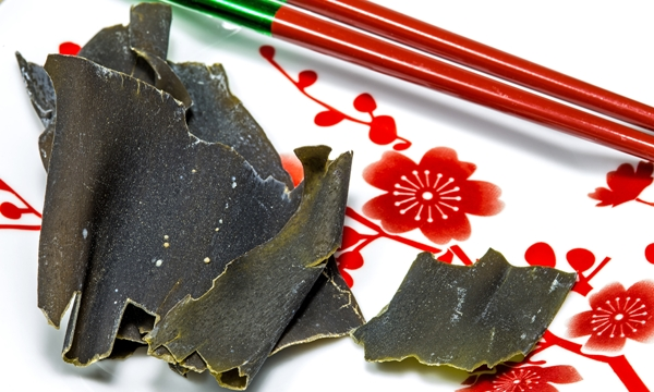 Japanese kombu for Dashi soup