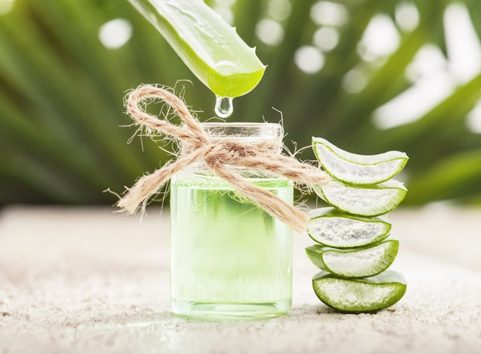 Aloe vera essential oil on tropical leaves background